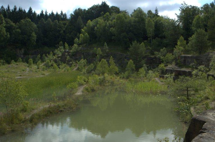 Pískovcový lom na Rasové vnikl těžbou pískovců svodnického souvrství a nyní je částečně zatopený vodou. Díky bohatému výskytu obojživelníků a růstu vstavačovitých rostlin byl prohlášen za přírodní památku.
