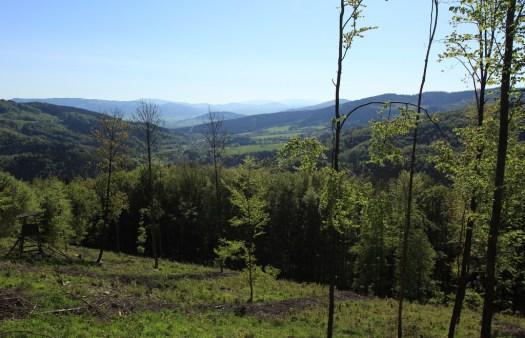 Zadní hory – pohled od Mionší do Jablunkovské brázdy.