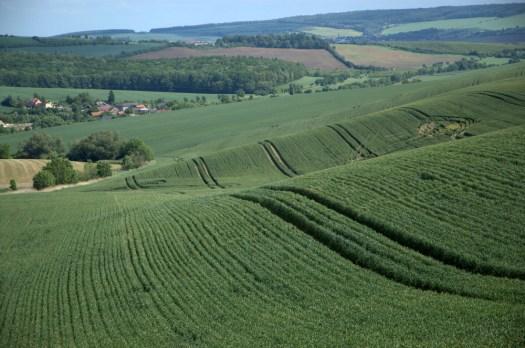 Údolí říčky Olšinky u Strabenic je charakteristické převahou orné půdy.
