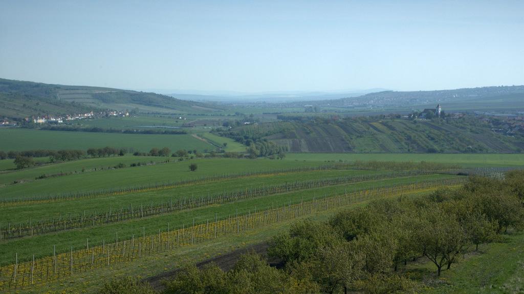 Údolí Trkmanky před Velkými Pavlovicemi. Pohled od rozhledny Slunečné.