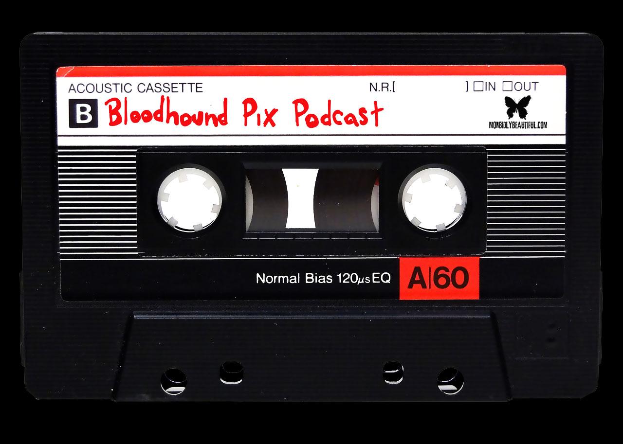 Bloodhound Pix