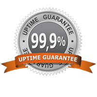 99_uptime_guarantee1