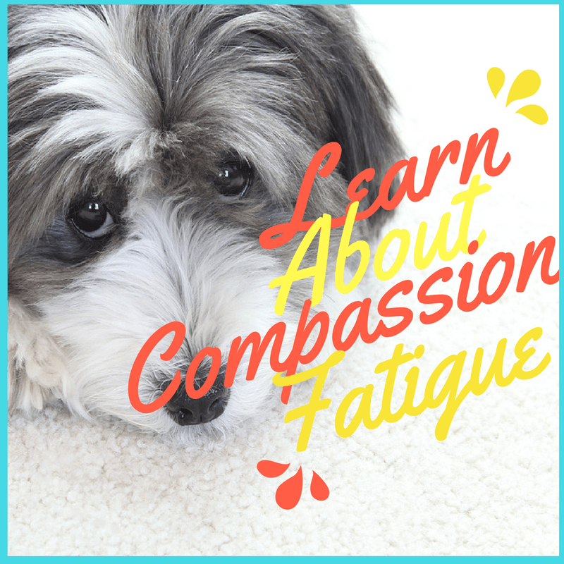 compassion fatigue eating disorders