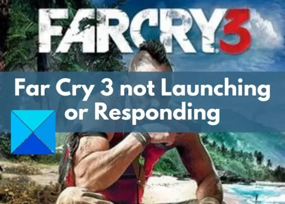 Far Cry 3 Not Launching or Responding