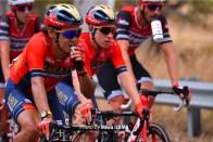 Santos Tour Down Under - 2019 - stage 2