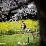自転車は心身の健康へ有効、JCFリリース『自転車を愛するみなさまへ』