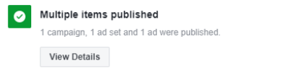 Successful Publish in Ads Manager