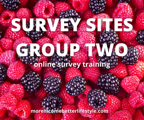 survey sites group two