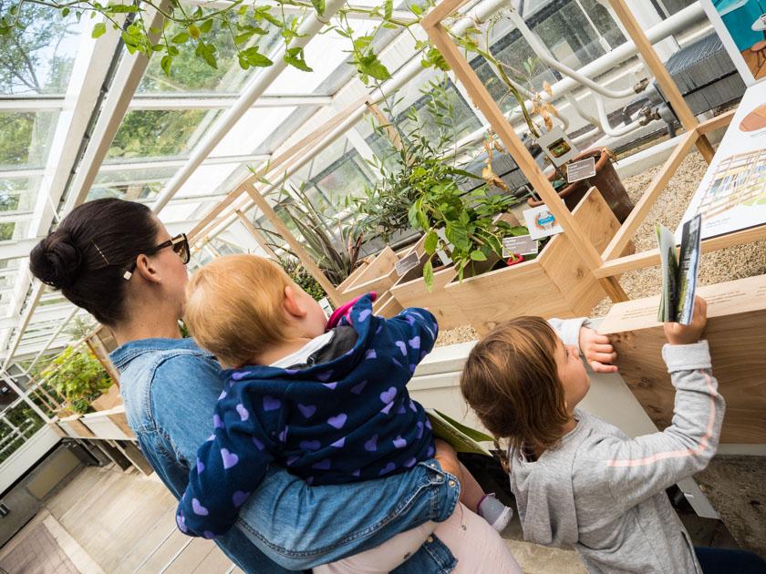Amsterdam-mit-Kindern-Hortus-Botanicus