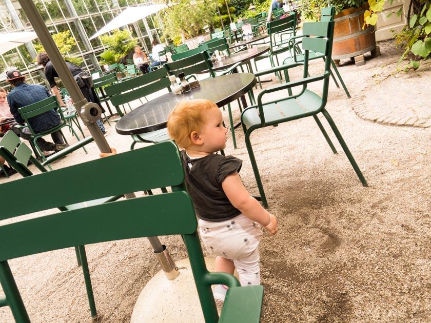 Amsterdam-mit-Kindern-Hortus-Botanicus-Cafe