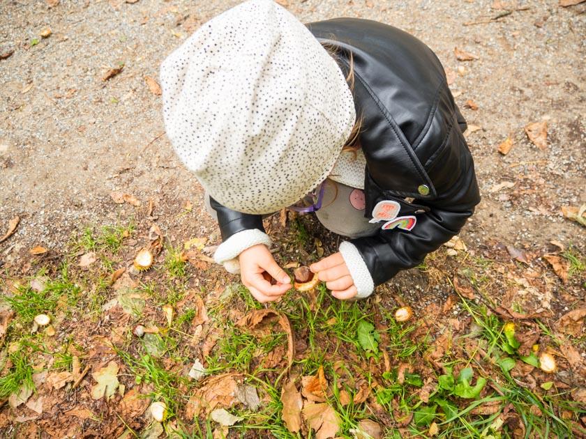 Herbstaktivitäten mit Kindern Mädchen sammelt Kastanien