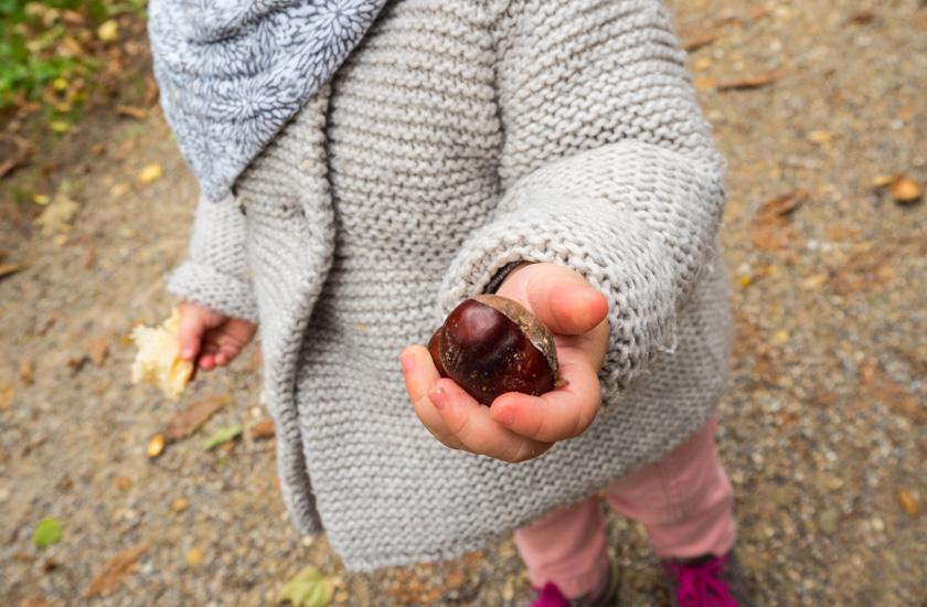 Herbstaktivitäten mit Kindern Kind hält Kastanie