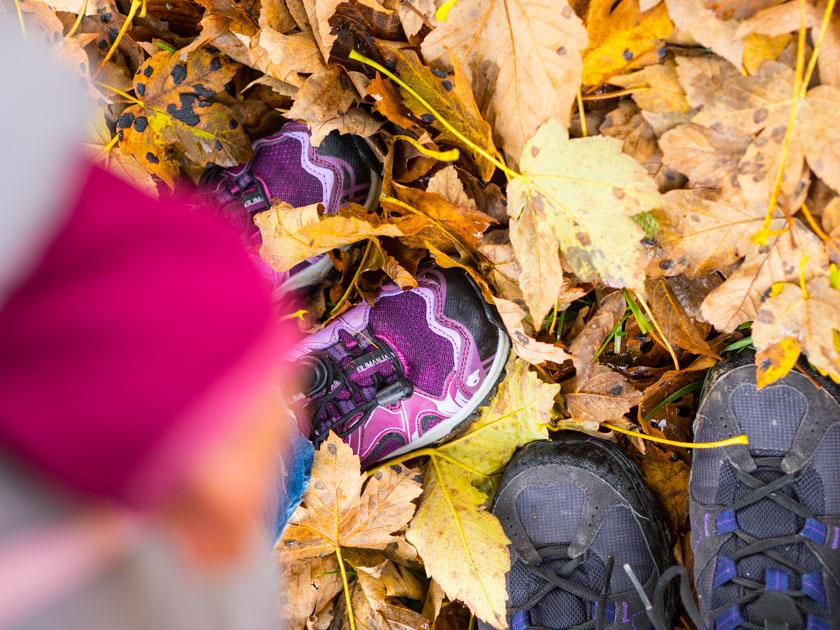 Familienurlaub am Bauernhof Wanderschuhe im Herbstlaub