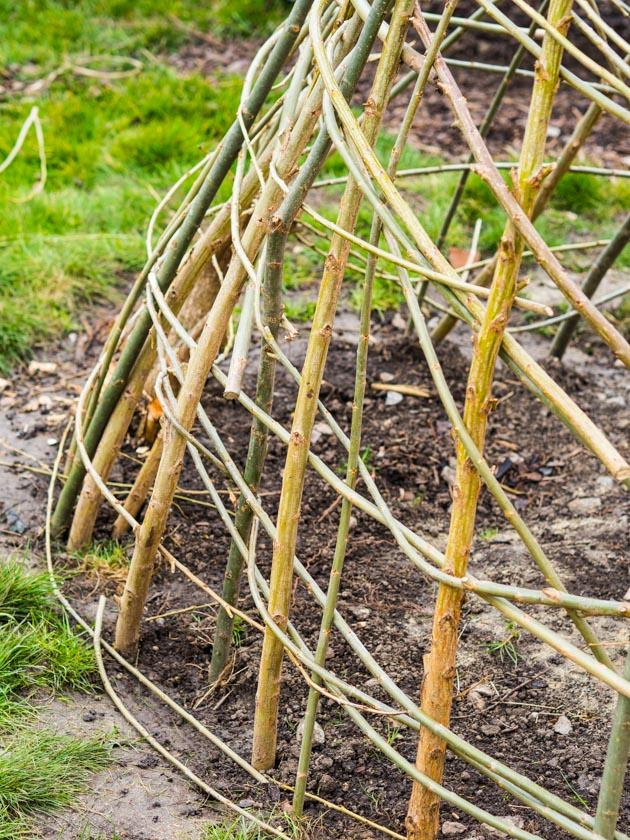 Weidentipi mit Kindern bauen_Weiden flechten