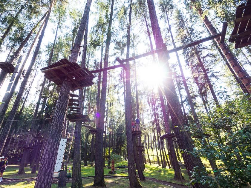 Feuerstein Nature Family Resort_Wald