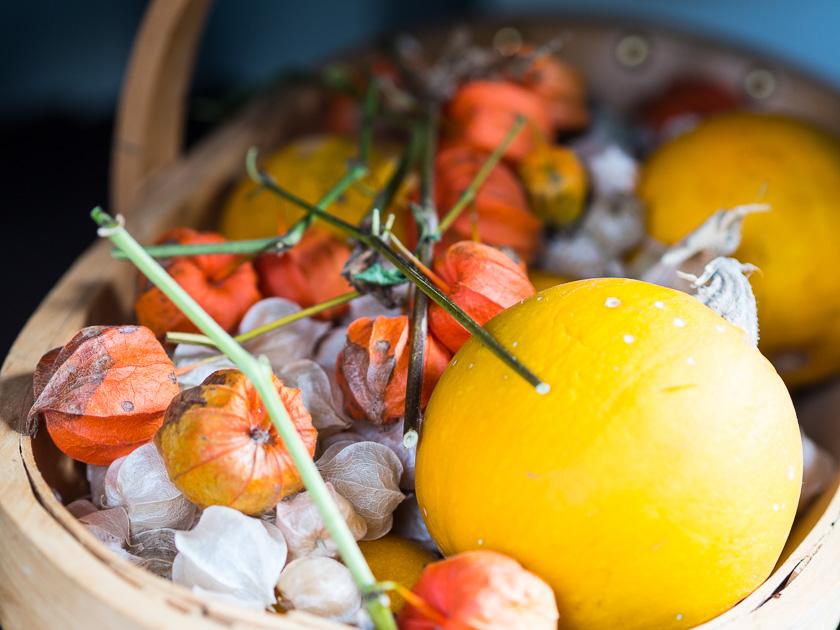 Gartenträume für Familien_Herbst