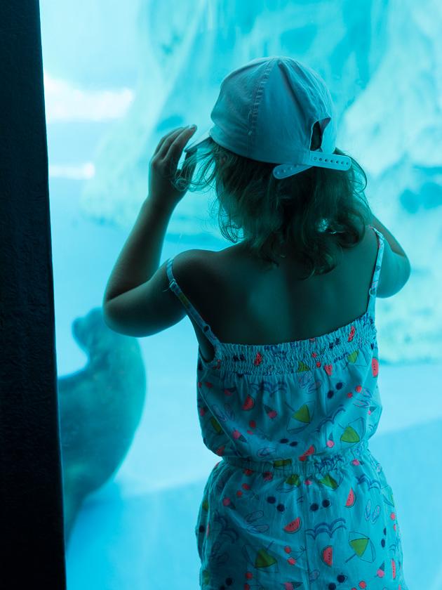 Urlaub am Gardasee mit Kindern_Aquarium Sealife Garda
