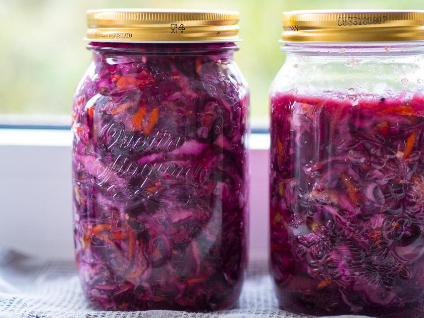 DIY aus der Küche Kimchi Rezept_selbst fermentieren