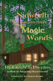 Nidworth and His Three Magic Wands cover