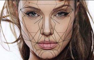Rostro Aureo con el que podemos valorar las simetrías y la estética facial por su distribución