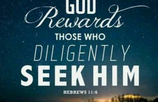 He is Our Reward