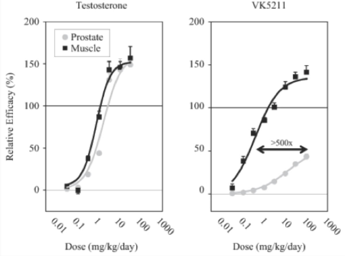 LGD-4033 Selectivity For Muscle To Prostate Compared To Testosterone
