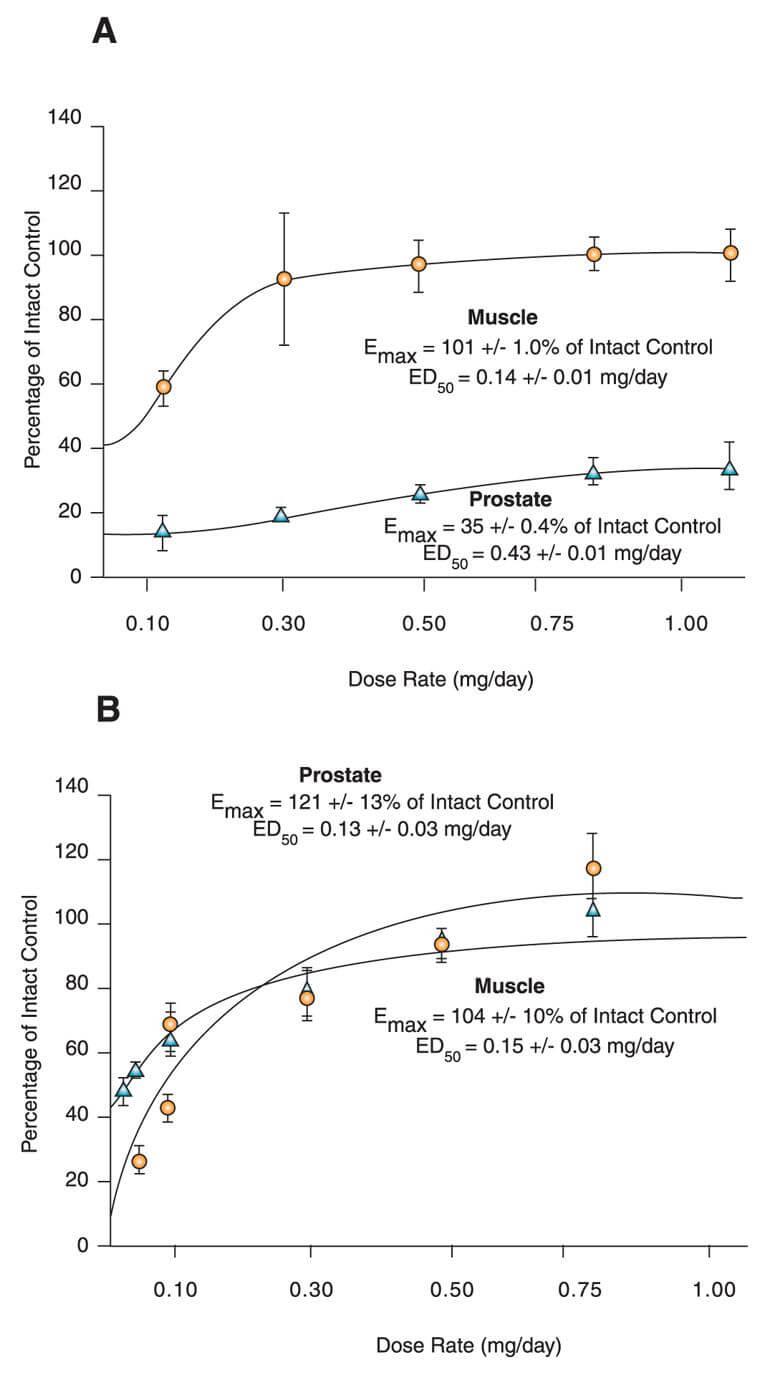 Anabolic:Androgenic Activity Of S4 Vs Testosterone