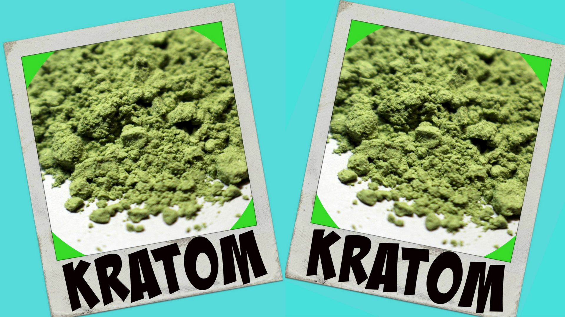 Kratom Guide For Beginners Overview Dosages Benefits Side Effects And Different Strains