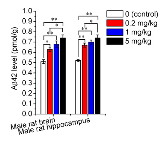 Aβ42 (amyloid-beta-42) levels in the brain after Trenbolone administration in rats