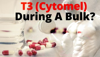 T3 (Cytomel) Overview - What To Expect