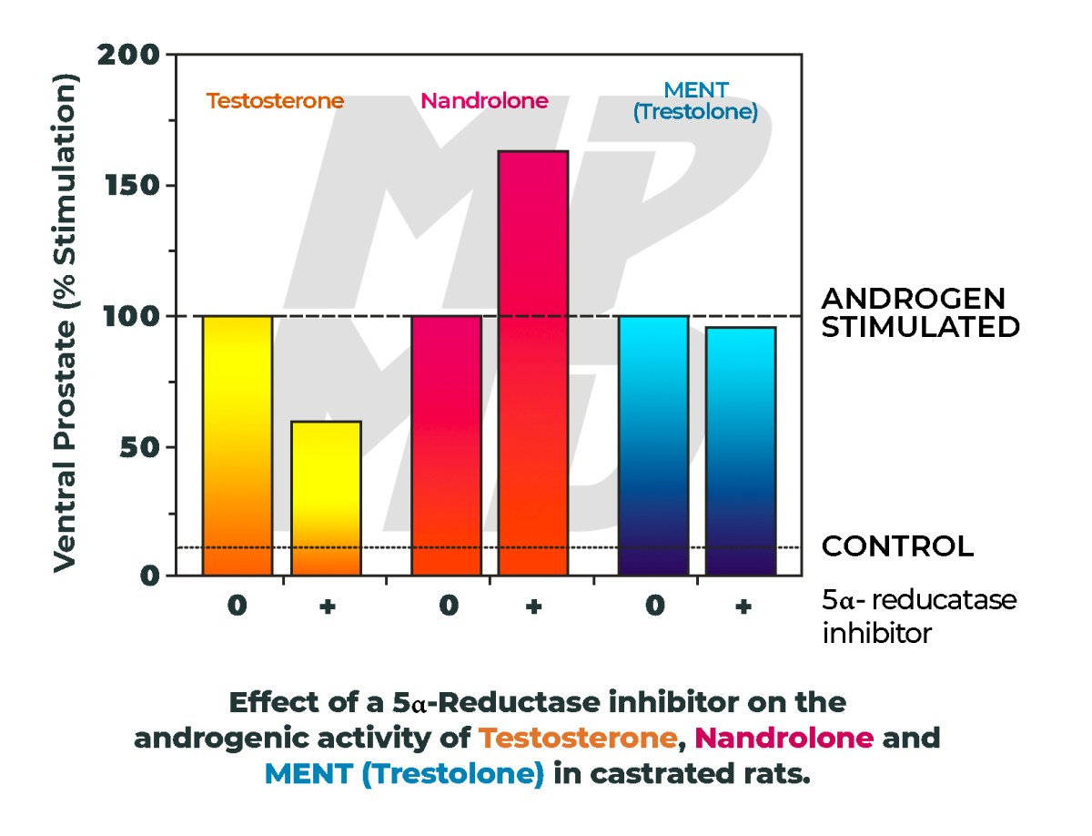Effect of a 5α-Reductase inhibitor on the androgenic activity of Testosterone, Nandrolone and MENT (Trestolone) in castrated rats.
