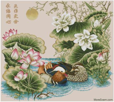 Романтическая мандаринка