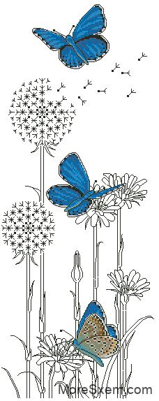 Голубой адонис