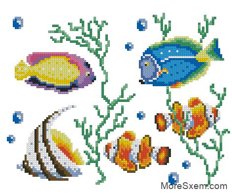 Рыбки. Водоросли. Пузырьки