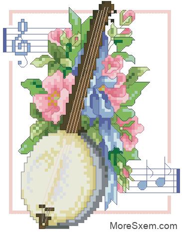 банджо и цветы