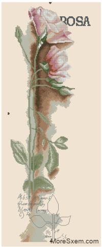 Роза (панель)