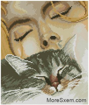 Кошачьи сны