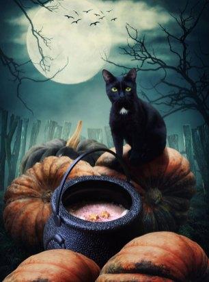 cauldron4