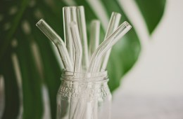 Go plastic free and use Stream Straws glass straws