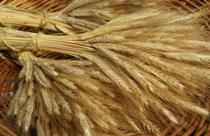 Wheat Sheaves in Basket