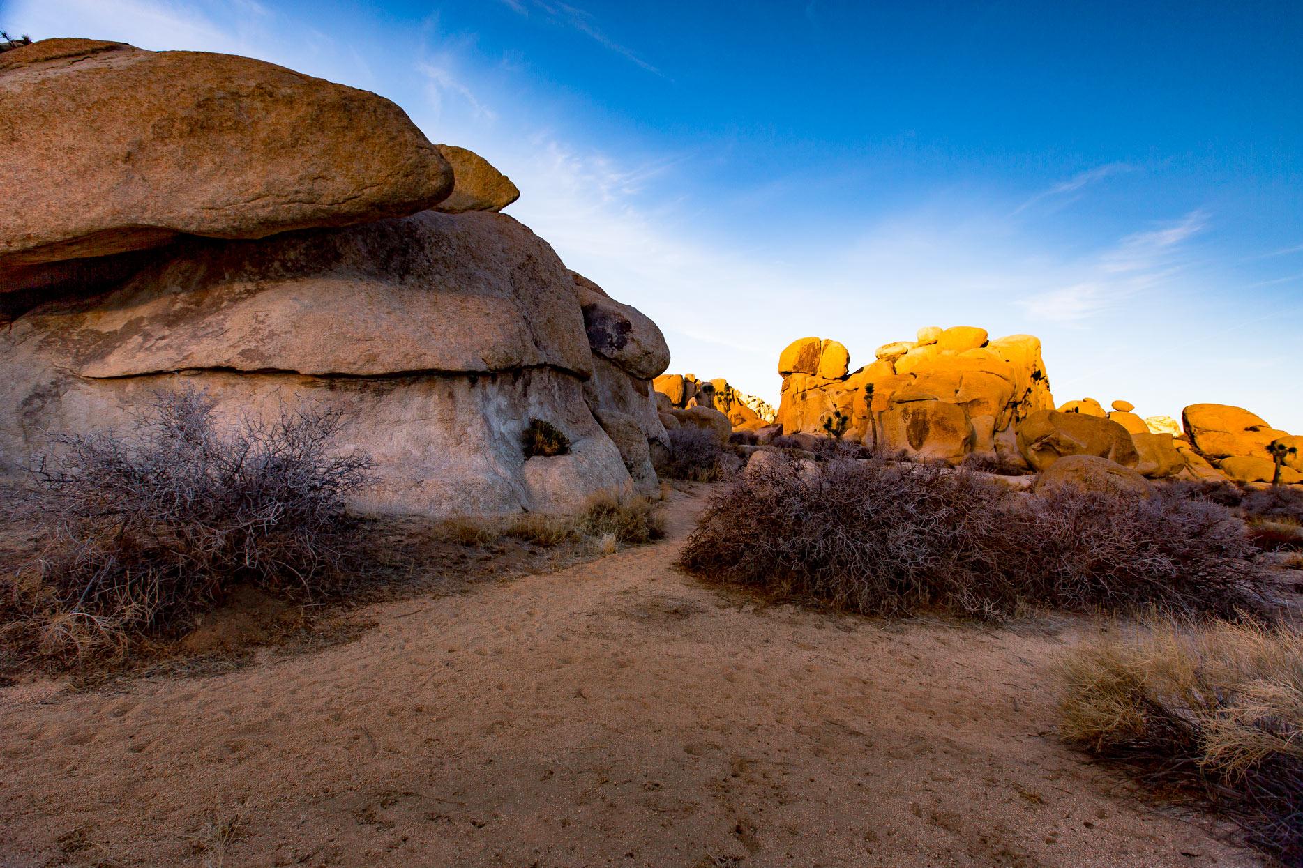 jumbo rocks joshua tree national park