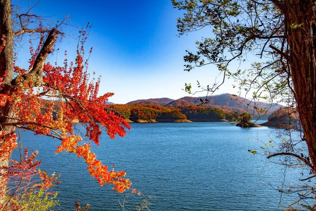 fontana lake - more than just parks