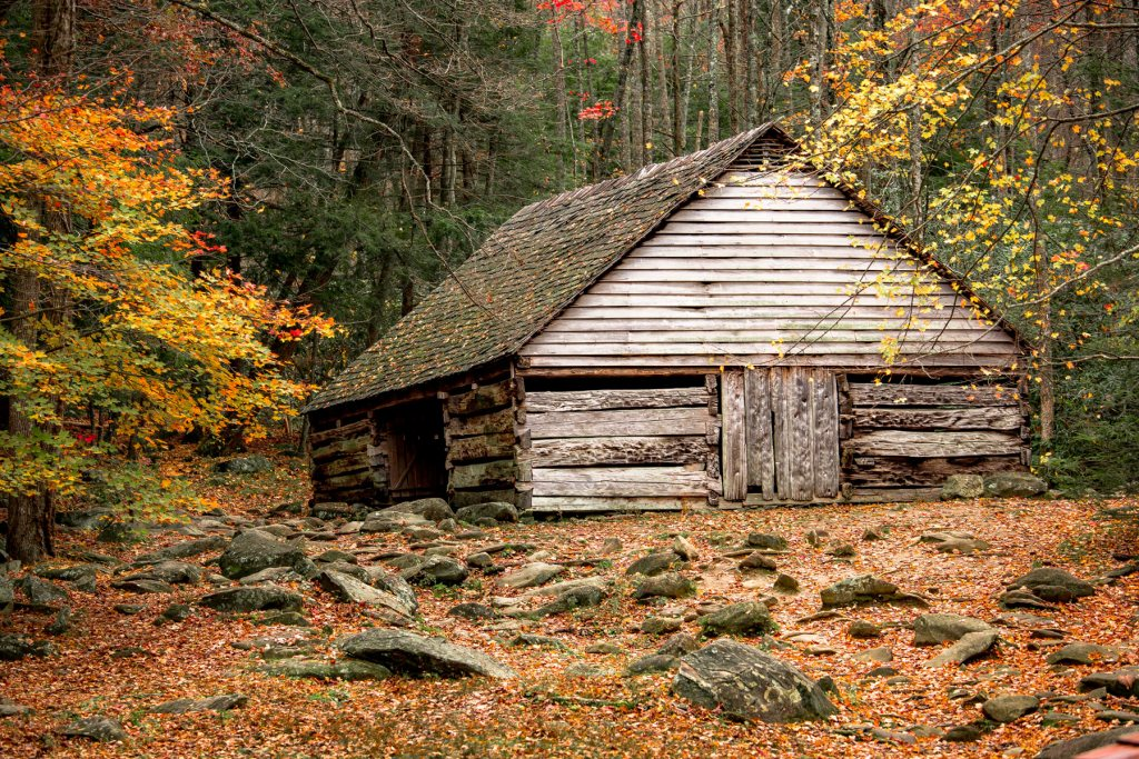 A cabin in fall - more than just parks