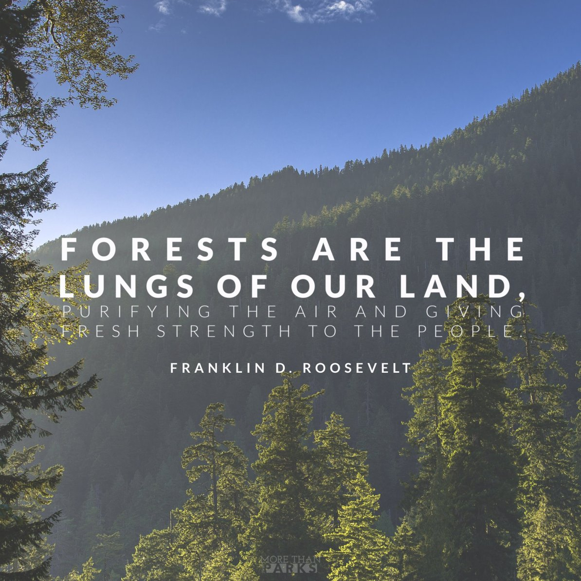 environmental quotes conservation quotes, FDR Quotes