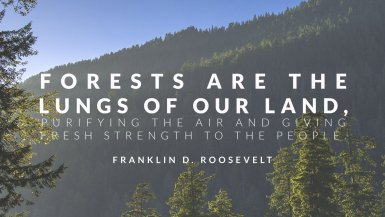 environmental quotes conservation quotes