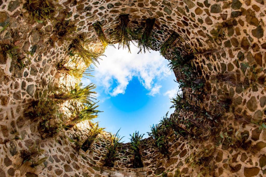 catherineberg ruins virgin islands national park st john