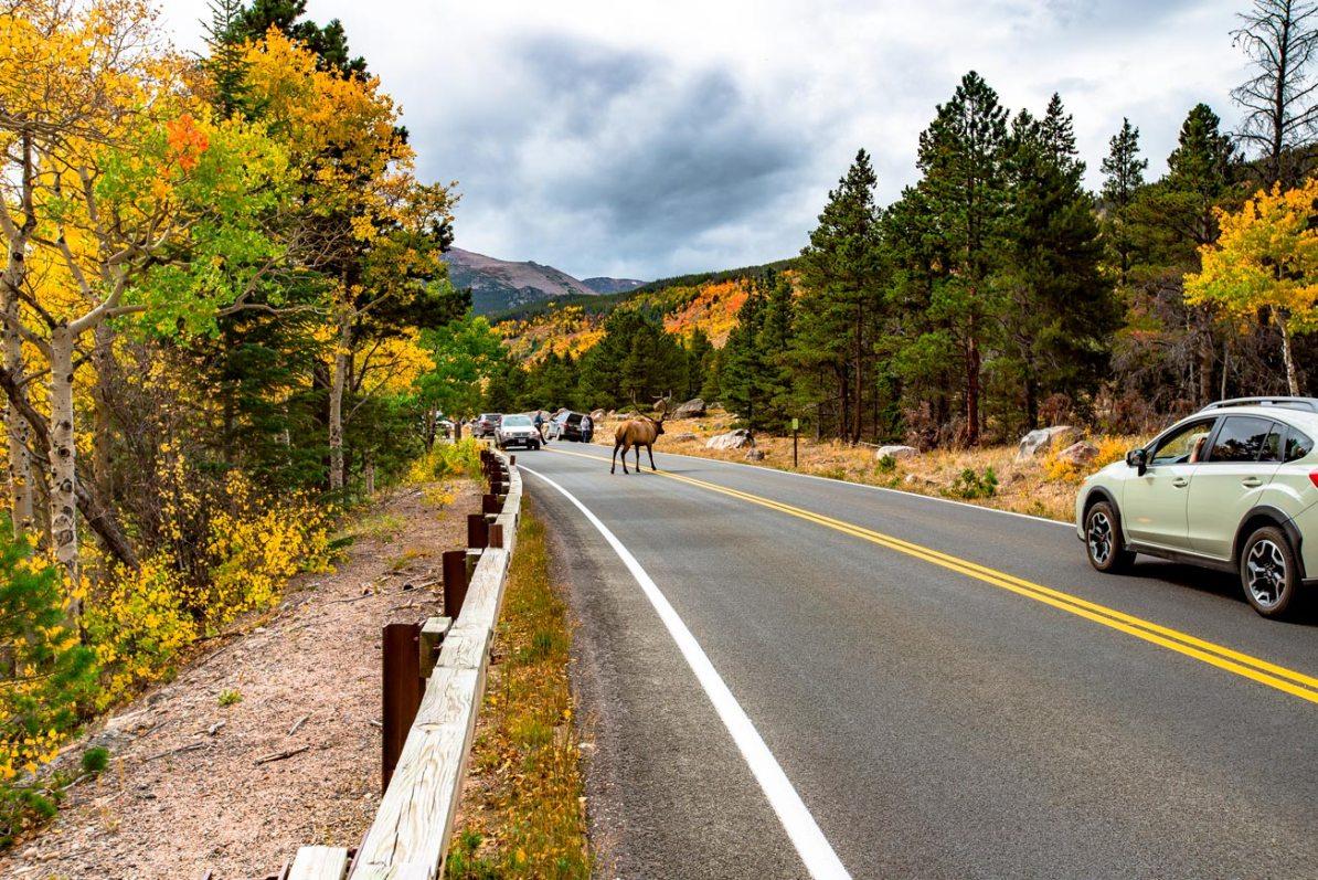 rocky mountain national park reservation system