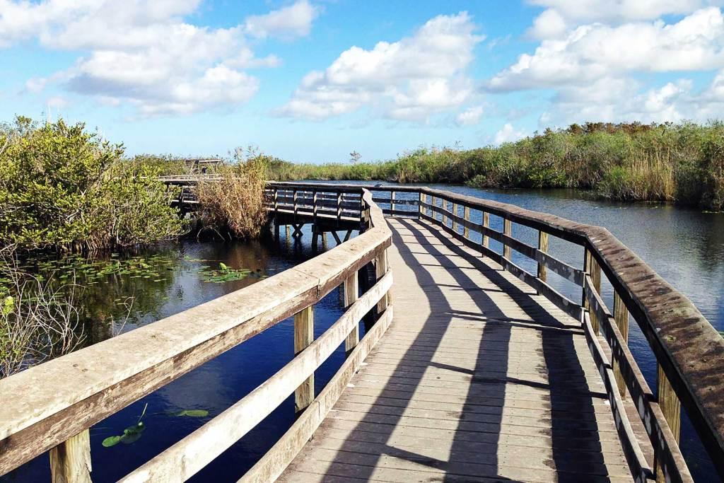anhinga trail everglades national park florida