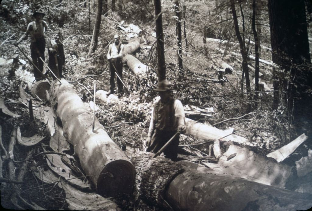 Appalachian Loggers