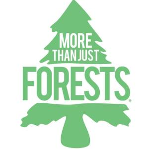more than just forests logo